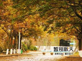 中国石油大学校园风景 初冬石大美如画