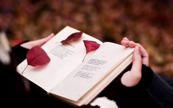 致当下大学生:你的阅读造就了你