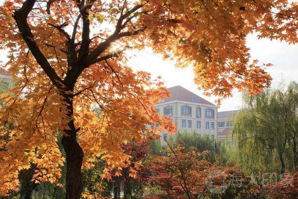 中国海洋大学报考指南