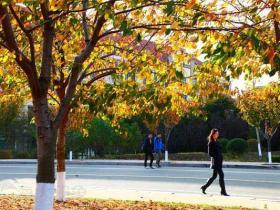 海洋大学——秋色校园