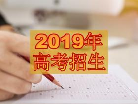 2019年山东省普通高等学校考试招生